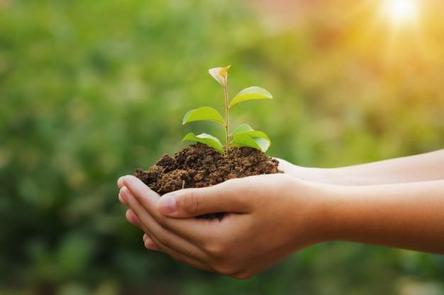 En Bálamo cuidamos del medio ambiente